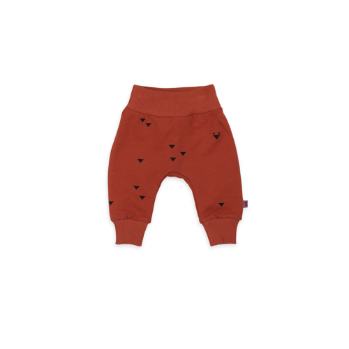 Froy & Dind broek Iggy Triangle Foxes