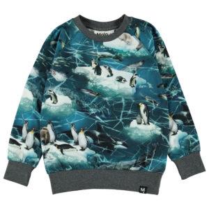 Molo Romeo Antarctica