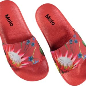 Molo Zhappy Australian Flowers