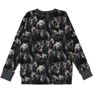 Molo Rill Bears