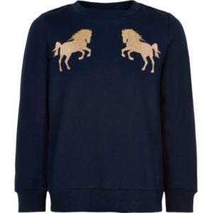 The New Tennesse Sweatshirt