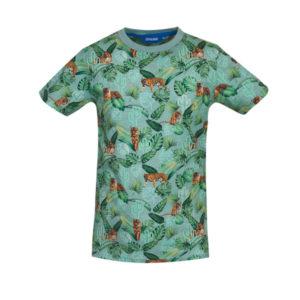 Someone T-shirt Rajah light green melange